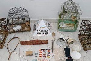 Polícia Militar apreende pássaros e drogas durante operação