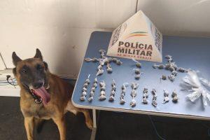 PM apreende 66 buchas de maconha no bairro São Francisco de Assis