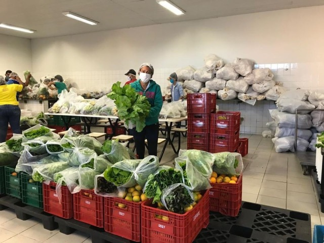 agricultura familiar1
