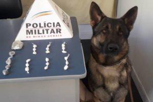 Manhuaçu: Papelotes de cocaína são localizados pela PM