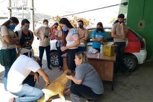 Manhuaçu: Agentes participam de atualização para vacinar cães e gatos