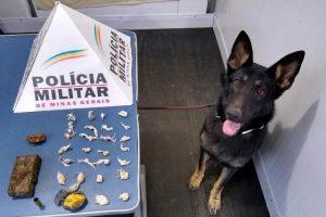 Manhuaçu: Cadela PM Kacau faz primeira apreensão de drogas