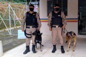 Cães da PM: Titan aposenta… chega Kacau