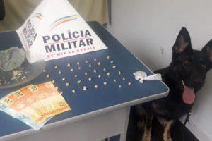 Plantão PM: Mais drogas apreendidas no bairro Santa Terezinha