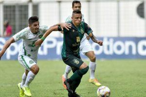 América e Chapecoense empatam; Coelho reclama gol anulado