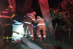 Motorista perde controle da direção e carro bate em árvore na 116